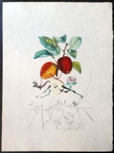 Salvador Dali - FlorDali (Les Fruits) - FlorDali Apple