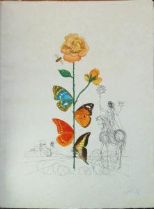 Salvador Dali - Flora Dalinae (FlorDali) - Rosa Papillonaea (Butterfly Rose)