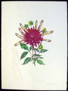 Salvador Dali - Surrealsitic Flowers, Florals - Lilies + clock face, B