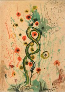 Salvador Dali - Alchimie des Philosophes - The Dream of the Alchemist