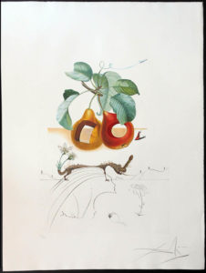 Salvador Dali - FlorDali (Les Fruits) - FlorDali FruitsTrouees