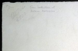 Salvador Dali - The Grasshopper Child (L'infant sauterelle) - Verso