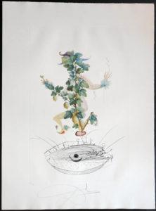 Salvador Dali - FlorDali (Les Fruits) - FlorDali Gooseberry