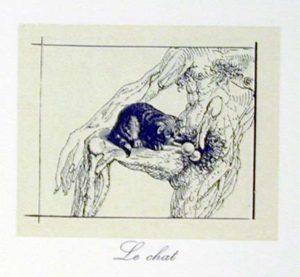 Salvador Dali - Les Metamorphoses Erotiques - Le Chat