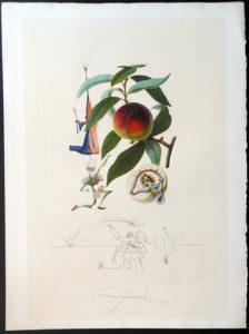 Salvador Dali - FlorDali (Les Fruits) - FlorDali Peach