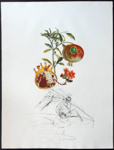 Salvador Dali - FlorDali (Les Fruits) - FlorDali Pomegranate