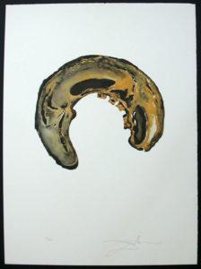 Salvador Dali - Anamorphoses - Le Crane (The Skull)