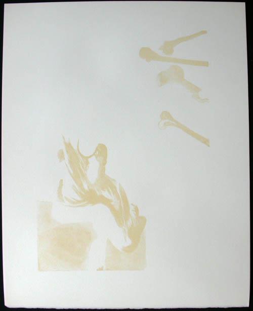 Salvador Dali - Divine Comedy Decomposition - DC12.jpg