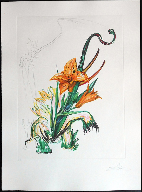 Salvador Dali - Surrealsitic Flowers, Florals - Lily + elephant, D