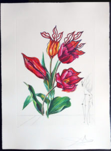 Salvador Dali - Surrealsitic Flowers, Florals - Tulips Girafe en feu, E