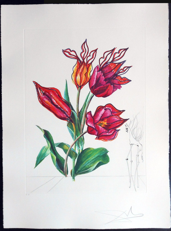 Salvador Dali - Surrealsitic Flowers, Florals - Tulips + Lips, E