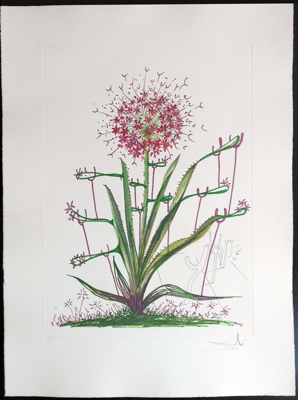 Salvador Dali - Surrealsitic Flowers, Florals - Cactus + Crutches, I