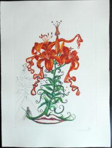 Salvador Dali - Surrealsitic Flowers, Florals - Tiger Lilies + Mustache